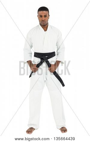 Portrait of fighter tightening karate belt on white background