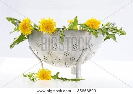 Marigold in colander ready to make flower salad