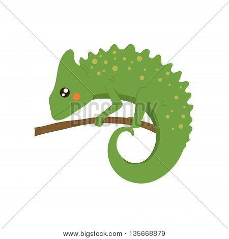 Chameleon Realistic Childish Illustration In Simple Cute Vector Design Isolated On White Background