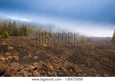 petrified lava flows of Teide volcano Roques de Garcia Teide National park Tenerife Canary islands Spain