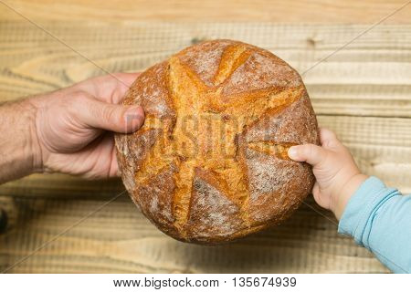 Round loaf of homemade bread in hands on wooden background