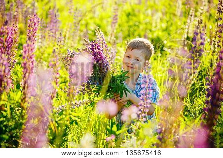Cute Preschool Child In Violet Lupines Flowers Field, Holding A Bouquet Of Wild Flowers.
