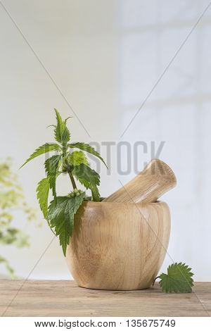 Freshly cut nettles in mortar for herbal medicine