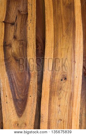 Wood surface, wooden background, wood floor, tree