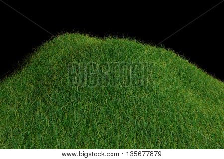 Juicy Grass On A Black Background Made In 3D
