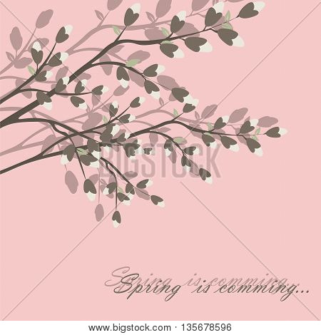 Spring is coming background tree with blossom flowers. Vector spring background. cherry blossoms on tree branches. Calligraphic frame. Place for text. Pink color
