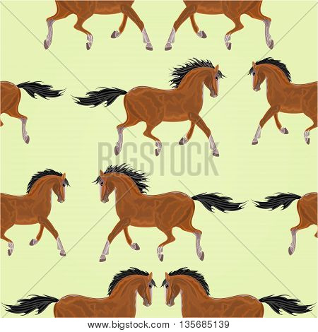 Seamless texture dark Horses stallion vector illustration