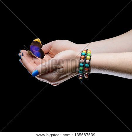 Women's hands with blue nails holding butterfly
