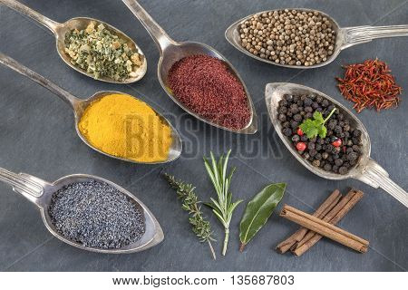 metal spoons with various ground spices and herbs