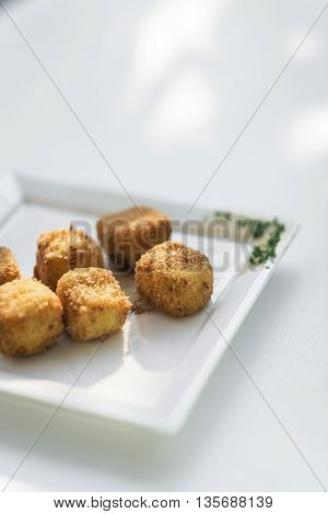 potato fried croquettes croquetas starter side dish on white background