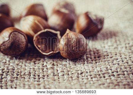 Filtered image of Hazelnuts on rustic background