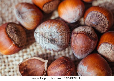Stack of hazelnuts. Hazelnut background macro. Hazelnuts