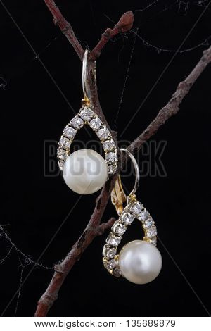 Pair Of Earrings With Artificial Pearls