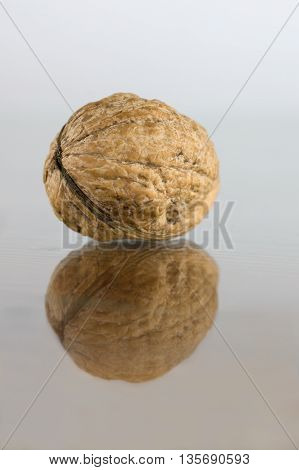 Walnut with reflection. Walnuts in shell. Healthy and tasty walnut.
