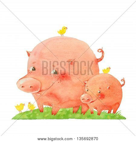 two pigs and birds watercolor illustration on a white background