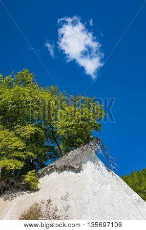 Chalk cliff on the island Ruegen in Germany.