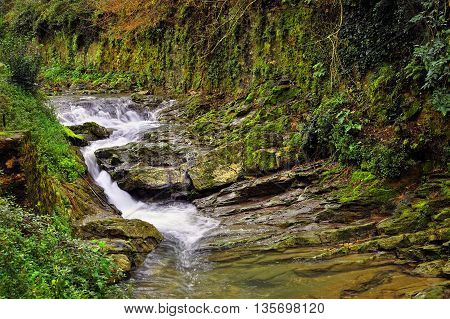 mountain stream with mossed stones and wall