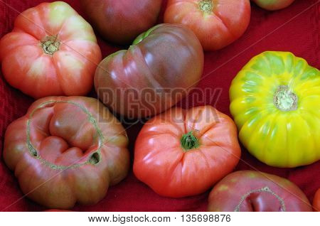 Heirloom tomatoes on display against red cloth