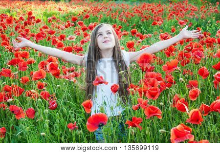 Beautiful girl in the field with red poppy flowers