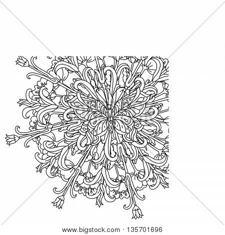 mandala shape flowers and butterfly for adult coloring book in zen art therapy style for anti stress drawing. Hand-drawn, retro, doodle, vector, mandala style, for coloring book or poster design.