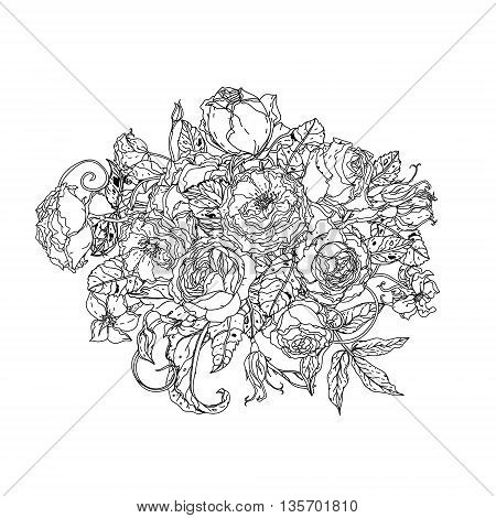 Uncolored colouring book style luxury roses in zenart style, could be used for Adult colouring book. Hand-drawn, doodle, vector the best for your design, wedding cards, coloring book. Black and white.