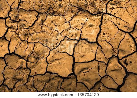 Cracked dry brown ground in drought