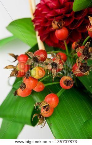 Dog rose fruits in a flower arrangement
