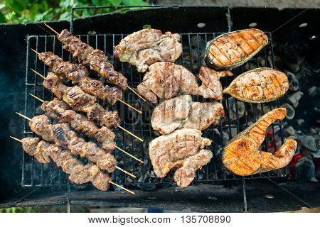 Grilled Foods Garnished with Parsley. Assorted grilled chicken, salmon, meat. Barbecue
