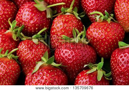 Many fresh, tasty red strawberries background closeup