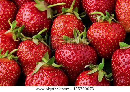 Many fresh, tasty red strawberries background closeup