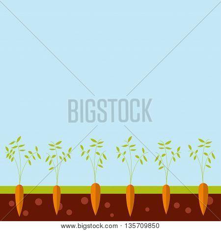 Cartoon garden bed with carrots vector illustration