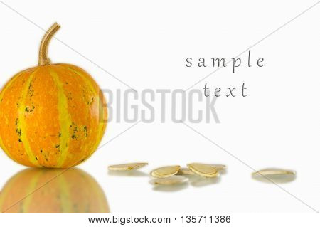 pumpkin and pumpkin seeds on a white background with space for writing