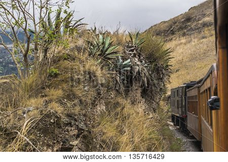 Train trip tour which goes to the famous Nariz del Diablo rocky mountain located in Aluasi town Ecuador