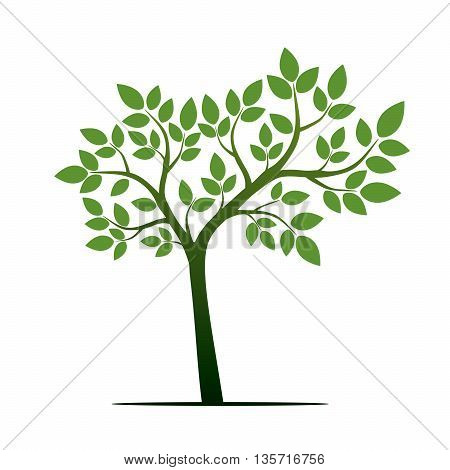 Green Tree. Vector Illustration and graphic element.