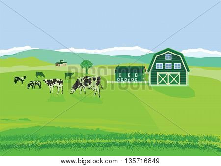 Cows on pasture with farm, cow cattle, milk