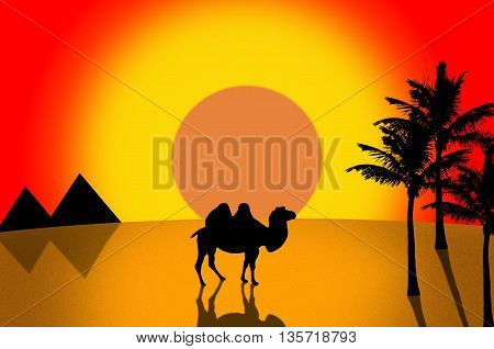 Camel in desert. Silhouette of camel, pyramids and palm on sunset