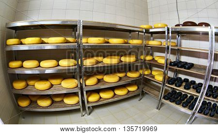 Cheese Factory Warehouse With Shelves Of Product Capretto And Latteria