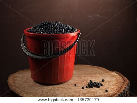 fresh Blueberries in a plastic bucket with berries in a red bucket