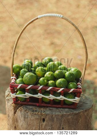 Fresh lemon lime in basket with blur background.