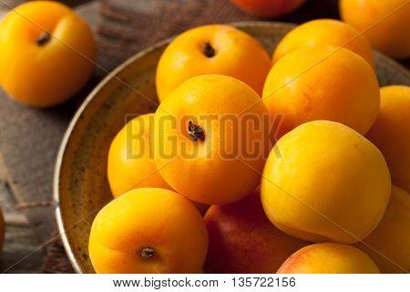 Raw Organic Yellow Plumcots