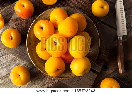 Raw Organic Yellow Plumcots