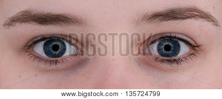 Closeup of a pair of blue human eyes