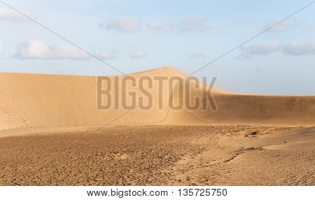 Dunes of Maspalomas - protected landscape area in Canary Island