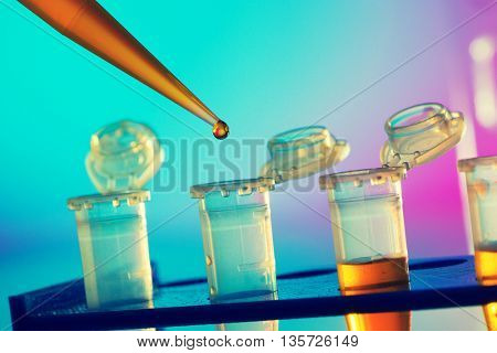 PCR strip test tubes and micropipette in genetics laboratory. Toned photo