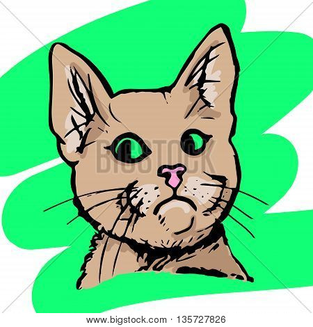 Graphic image of a head of a cat in color. Funny cat looking to the side an abstract pattern. Vector illustration