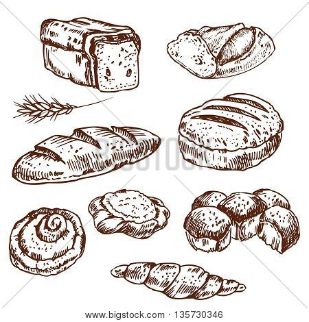 Vintage hand drawn sketch style bakery set. Set of fresh bread. Hand drawn illustration of bread and bakery product. Bakery hand drawn collection. Vector brown and white engraving illustration.