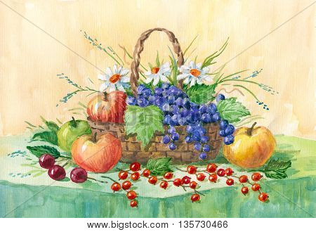 Still life with apples grapes and red currants. watercolor painting. Illustration