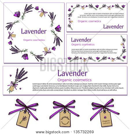 Vintage hand drawn lavender design elements on white background. Engraving illustration. Vector lavender template in vintage style. For signage logos branding label product packaging.