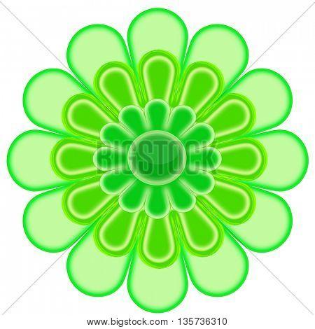 Beautiful green flower