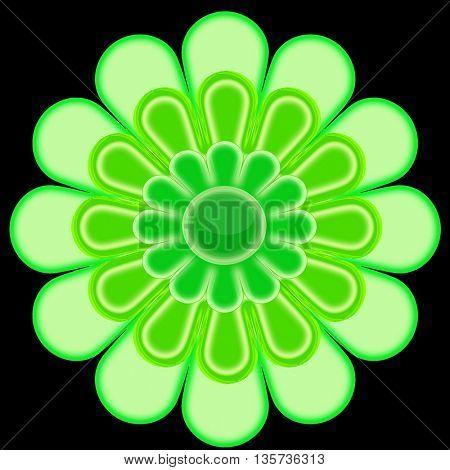 Green flower on black background